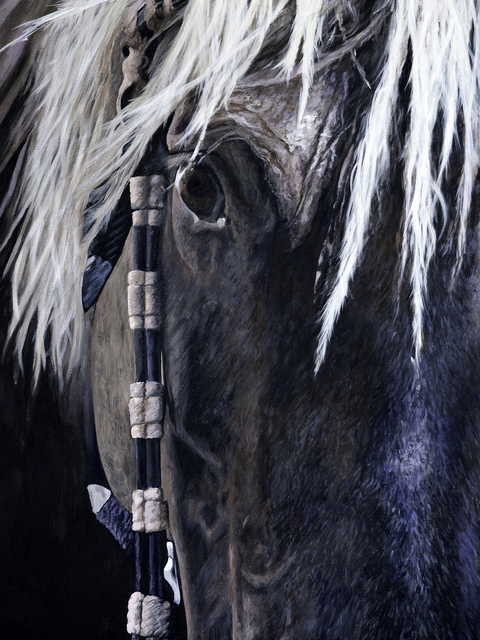 , 'Chief / Rocky Mountain Horse,' 2015, braveARTconsulting