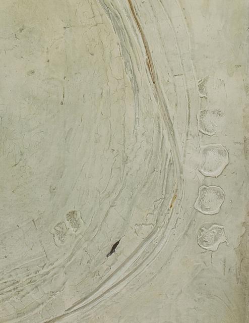 Jutta Naim, 'Inceptions 2', 2013, Oeno Gallery