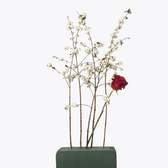 , '5 White Berries, 1 Red Rose,' 2013, Gagosian