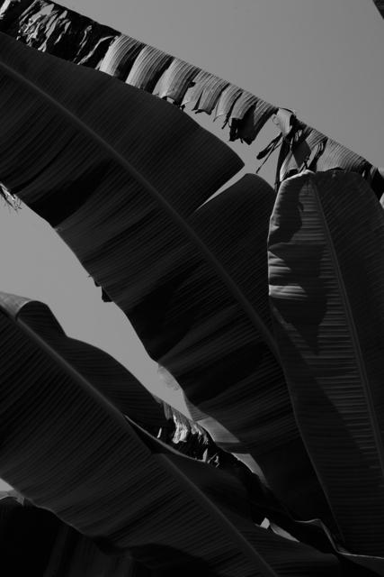 , 'Bakuba #1,' 2013, Casemore Kirkeby