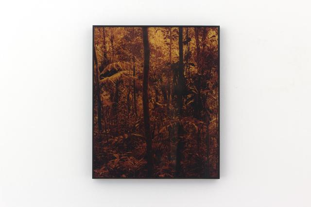 , 'Tapeaba,' 2013, Carbono Galeria