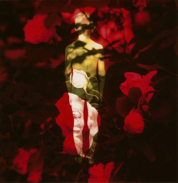Marjukka Vainio, 'The Heart Has Its Reasons II', 1998.2019, Taik Persons