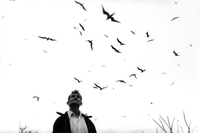 , 'El señor de los pájaros, Nayarit, México,' 1984, Ruiz-Healy Art
