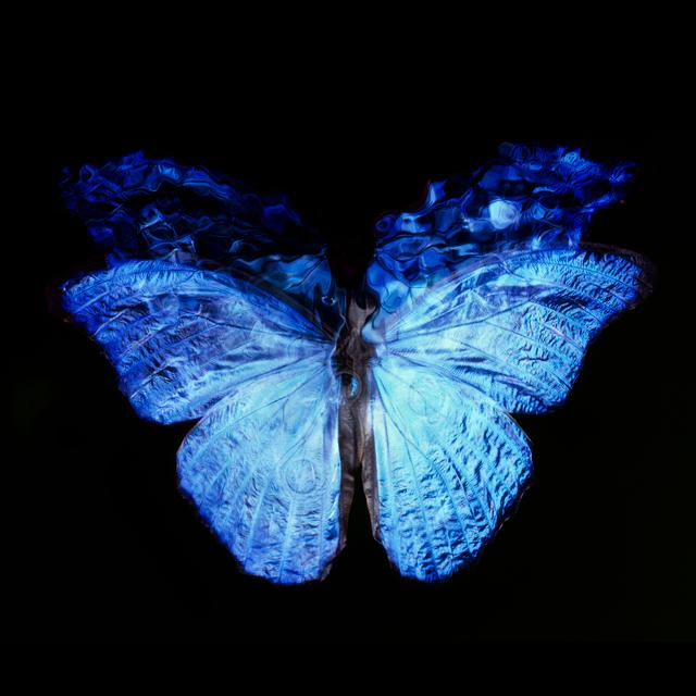 , 'Transparency of a Dream [0813-23],' 2013-2018, Dellasposa