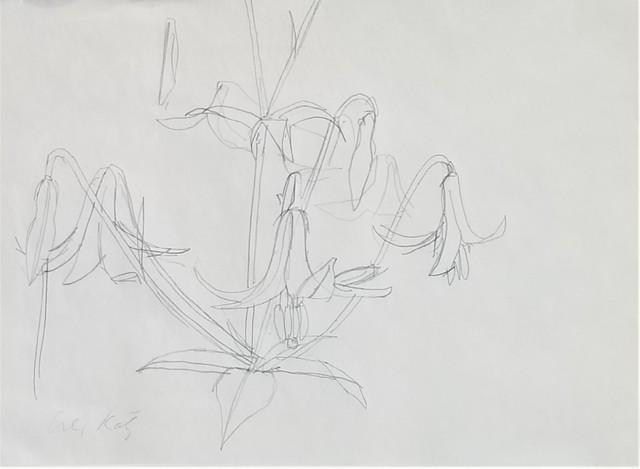 Alex Katz, 'Day Lillies 2', ca. 1960, Clarke Gallery