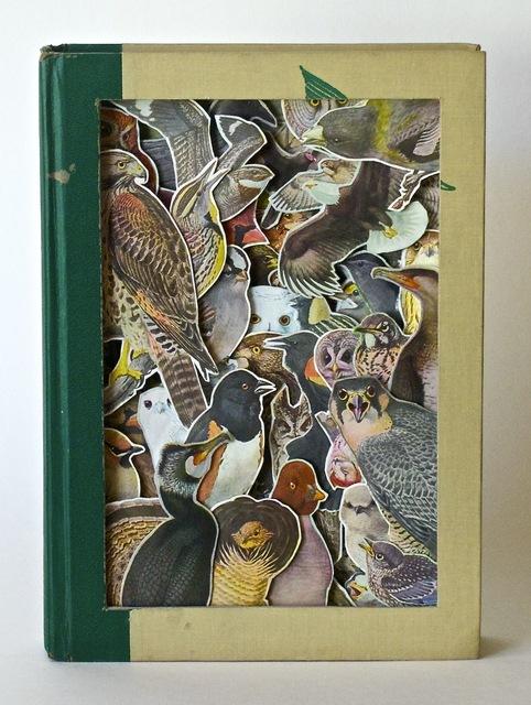 , 'Birds of America,' 2018, Jonathan Ferrara Gallery