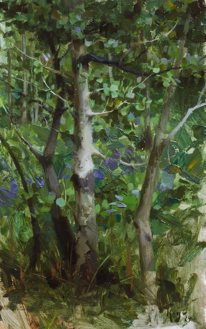 , 'Morning Aspens,' 2014, Gallery 1261