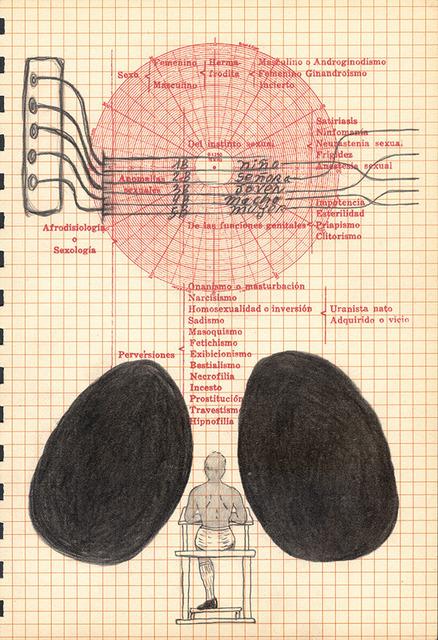 , 'Callejón Oscuro,' 2013-2014, 80M2 Livia Benavides