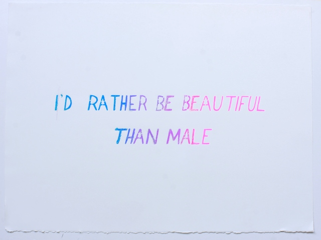 , 'I'd Rather Be Beautiful,' 2010-2012, Cantor Fitzgerald Gallery, Haverford College