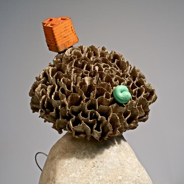 Alejandro Pérez Falconi, 'From the Series: Pequeños monstruos de playa, Juana la Moña   ', 2014, Knoerle & Baettig Contemporary