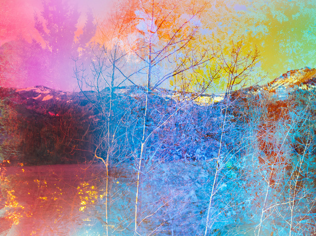 Terri Loewenthal, 'Psychscape 841 (Silver Lake, CA) 2018', 2018, CULT | Aimee Friberg Exhibitions