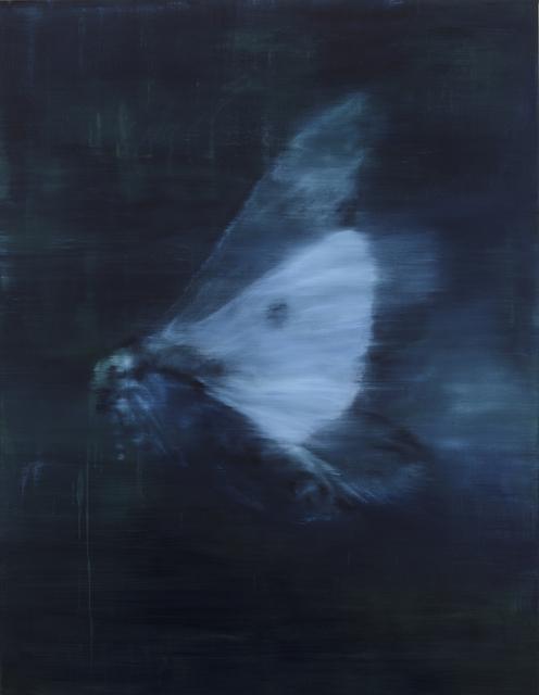 , 'Moth I,' 2017, Barnard Gallery
