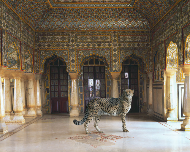 """, 'Return of the Hunter. Jaipur Palace. Jaipur.From the series """"India Song"""",' , Danziger Gallery"""