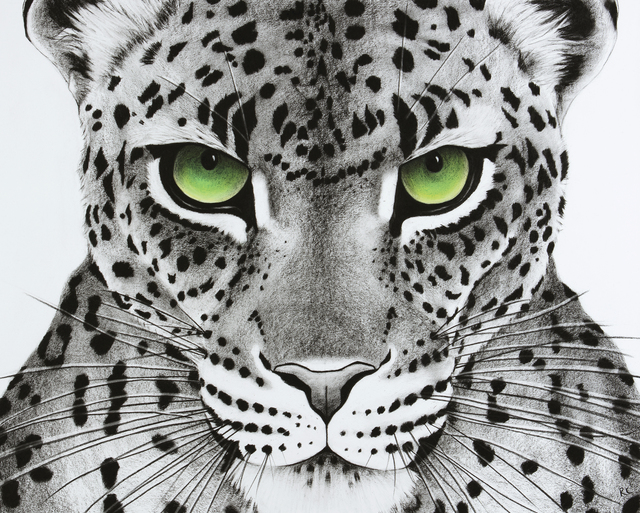 , '8. Green Eyed Leopard,' 2018, Sladmore Contemporary