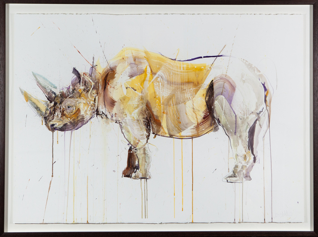 Dave White, 'Black Rhino', 2018, Painting, Watercolour on Fabriano Artistico 640gsm Hand Torn edge Paper, The Drang Gallery