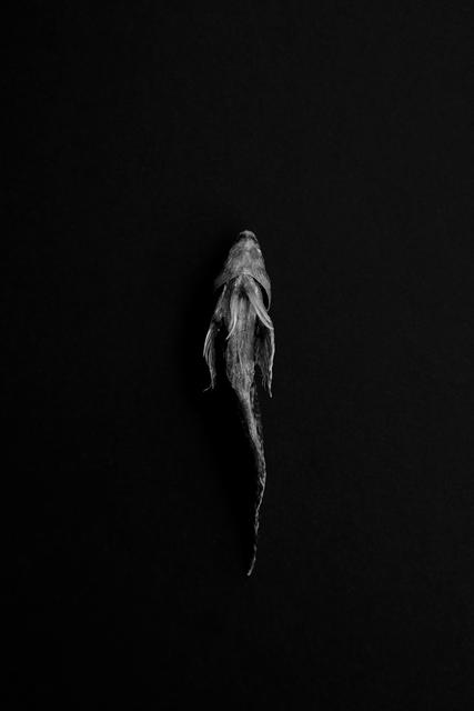 , 'Sea in Me #6,' 2015, Galerija Fotografija