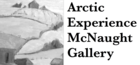Arctic Experience McNaught Gallery