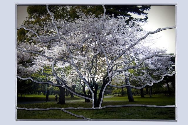 , 'Cerisier à Beppu (V15),' 2011, Galerie Nathalie Obadia