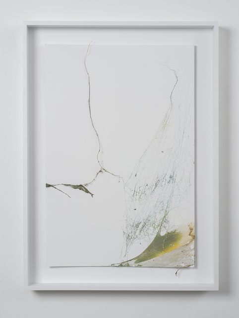 , 'Untitled,' 2015, Simon Preston Gallery
