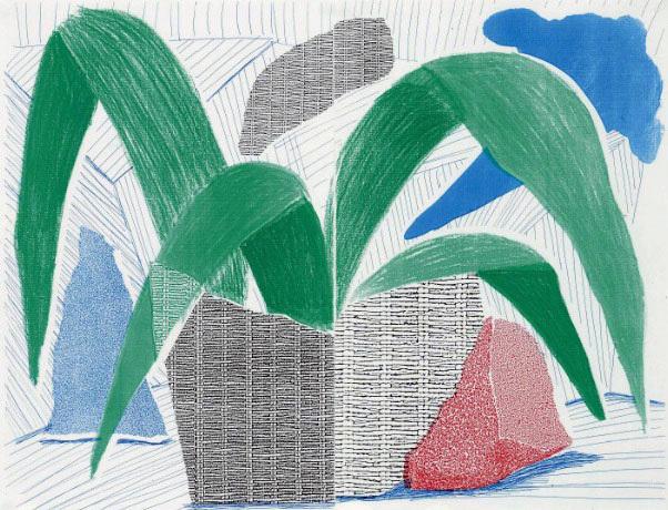 , 'Green Grey & Blue Plant, July 1986 ,' 1986, Kenneth A. Friedman & Co.