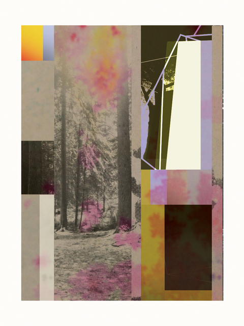 , 'Forest XIV,' ca. 2018, Artgráfico