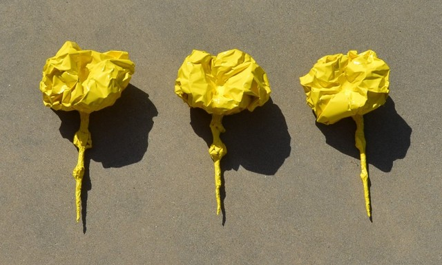 , 'Flora, Sun Yellow,' , blankblank