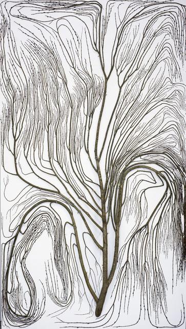 , '2D Tree (1),' 2017, Galerie Anhava