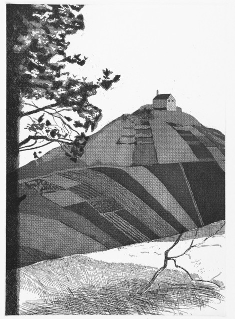 David Hockney, 'A Wooded Landscape', 1969, Stubbs Fine Art