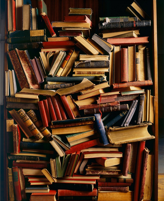 Laurie Rubin, 'Book Shelves', Chicago Art Source
