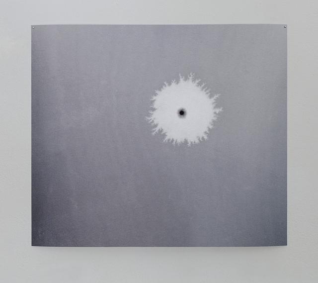 , 'Amoeba I,' 2017, Galleri 2987