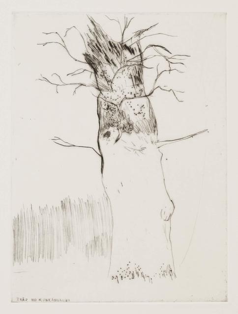 Andreas Eriksson, 'Träd vid Munkängarna', 2016, Stephen Friedman Gallery
