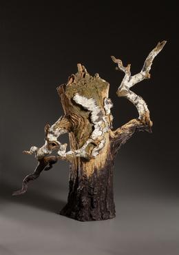 Charred Spilt Log Birch Teapot