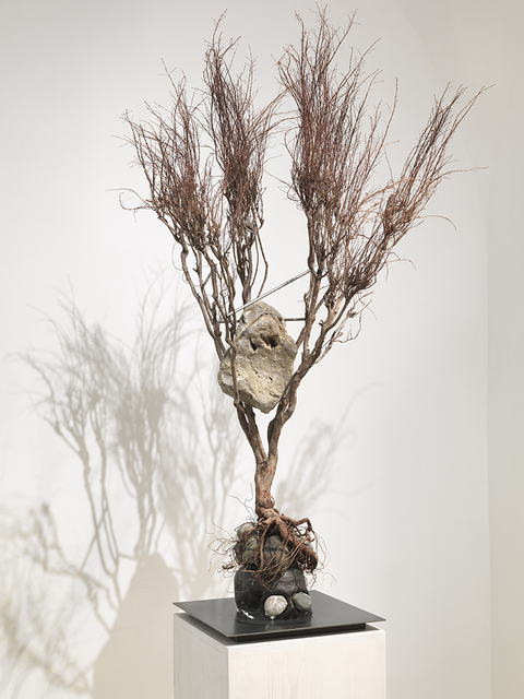 , 'Metamorphosis, Ovidio,' 2012, Studio Trisorio