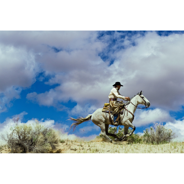 , 'Epic Western no. 9,' 2010, Danziger Gallery