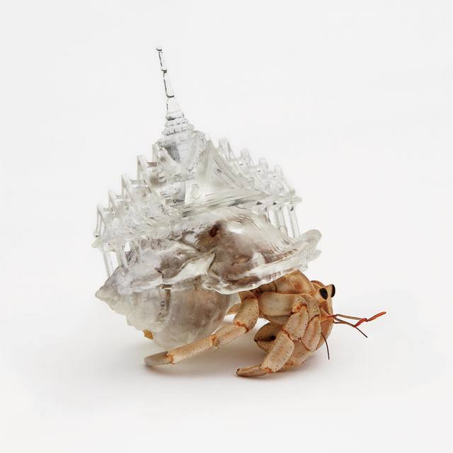 """, 'Why Not Hand Over a """"Shelter"""" to Hermit Crabs? -Border-,' 2010, MAHO KUBOTA GALLERY"""