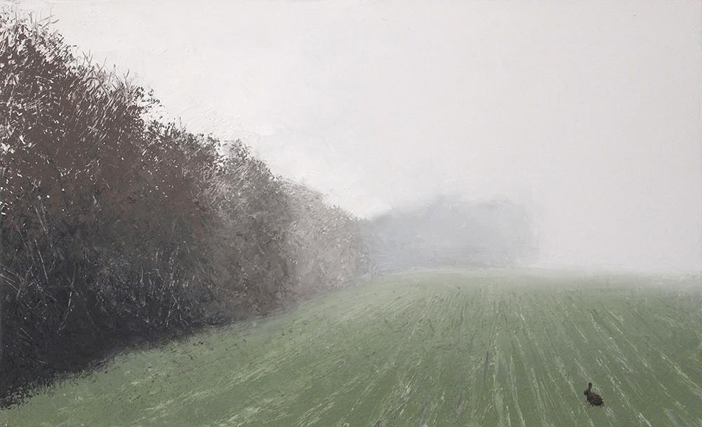 Картинки по запросу Benoit Trimborn Lapin au brouillard