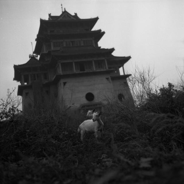 Tian Ye, 'Wandering Slowly 14 [慢慢的游走 14]', 2002-2005, OFOTO&ANART