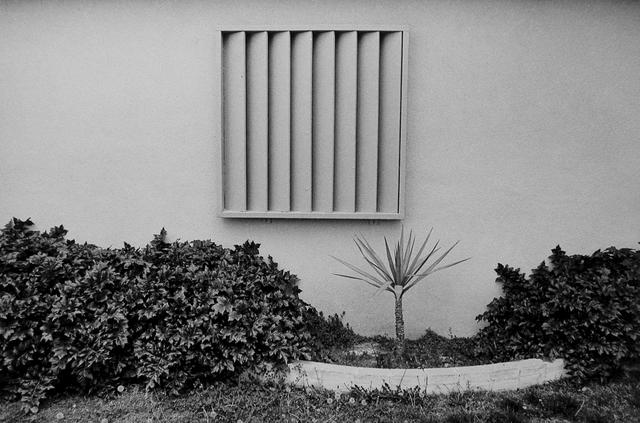 , 'DSCN0666,' 1972, Gallery Luisotti