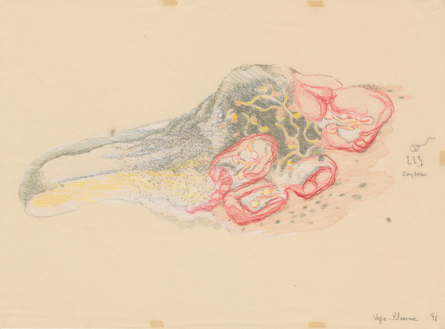 , 'Vege-pleasure, the Drawings《蔬果乐习作》,' 1996, Long March Space