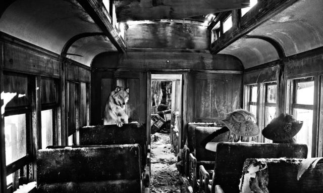 David Yarrow, 'Ride The Ghost Train', 2015, Photography, Archival Pigment Print, Samuel Lynne Galleries