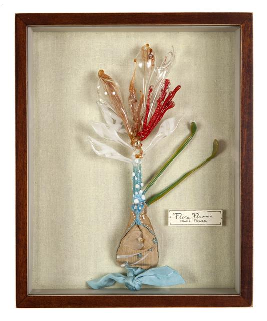 , 'Flora Flamma (Flame Flower),' 2013, Nancy Hoffman Gallery