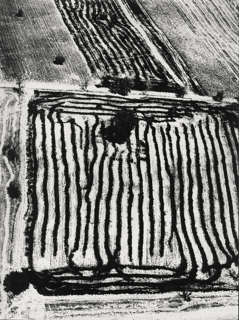 , 'Paesaggio,' 1978, Robert Klein Gallery