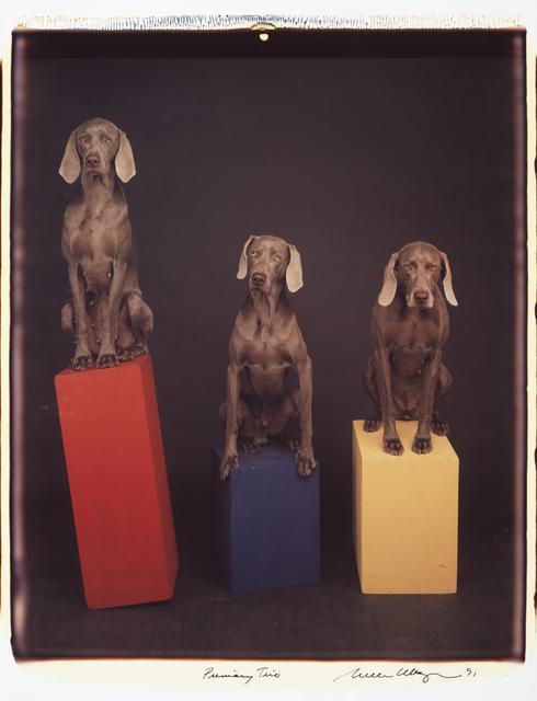 , 'Primary Trio,' 1991, Huxley-Parlour