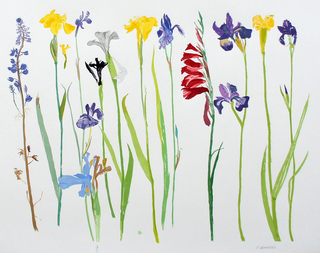 , 'Wild Flowers,' 2013, Glasgow Print Studio