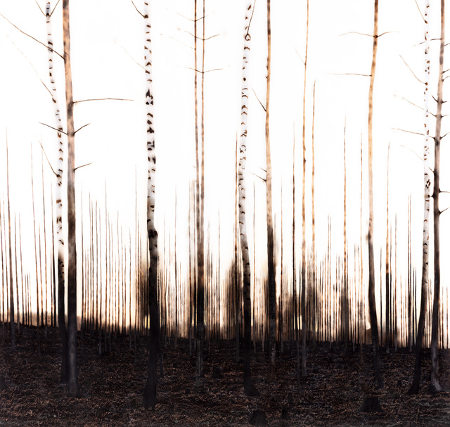 , 'Ängd,' 2019, Wetterling Gallery
