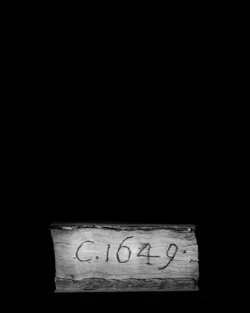 , 'Codex C.1649,' 2016, Magazzino