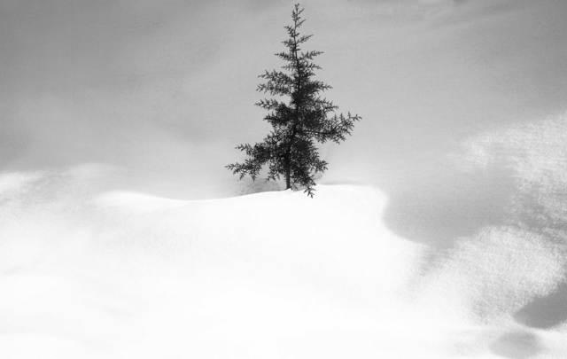 , 'Snow No. 34,' 2002, Rossi & Rossi