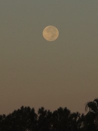 Full Moon, Pacific Palisades, CA