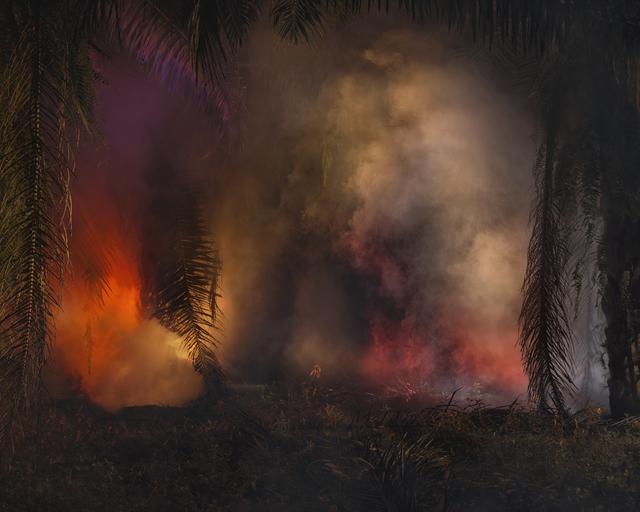 Julian Charrière, 'An Invitation to Disappear - Surat Thani', 2018, Ben Brown Fine Arts