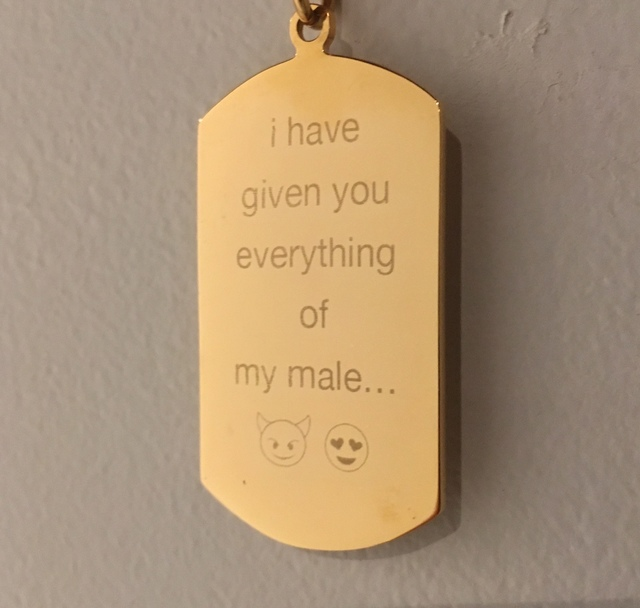 , 'i have given you everything of my male,' 2017, Back Gallery Project